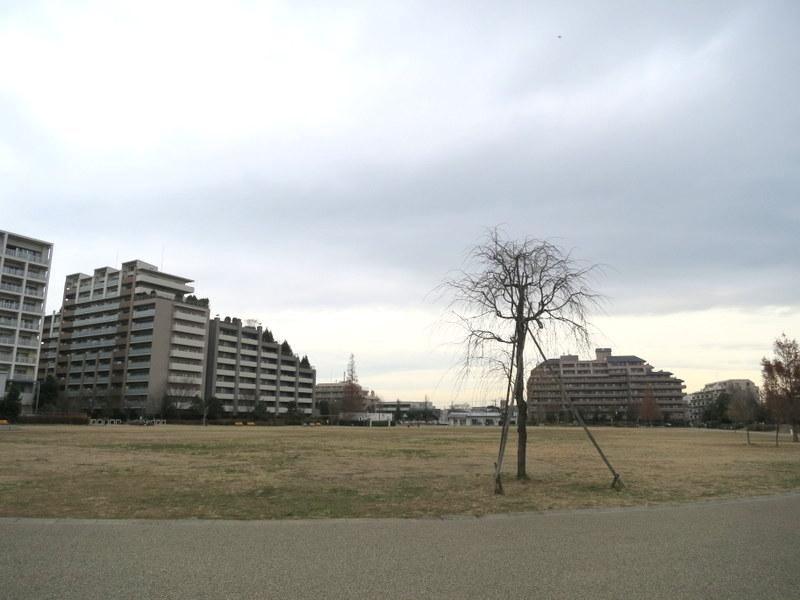 1-はらっぱ公園-2