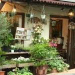 【西荻窪駅 南口】お花を贈りたい人必見!西荻南、松庵のフラワーショップ5選