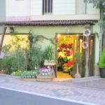 【西荻窪駅 南口】お花を贈りたい人必見!西荻南、松庵のお花屋さん4選